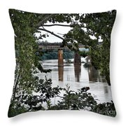 Congaree River Glimpse Throw Pillow