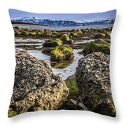 Conglomerate Boulders, Green Point, Nl Throw Pillow