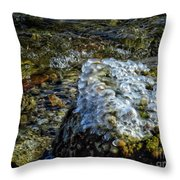 Conglomerate Ice Throw Pillow