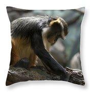 Congo Monkey3 Throw Pillow