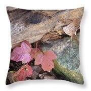 Congruence Throw Pillow