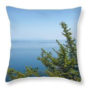 Coniferous Trees On Blue Sky Background Throw Pillow by Sergey Taran