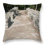 Conjunto Pinturas At The Coba Ruins  Throw Pillow