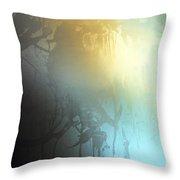 Conjurer Throw Pillow