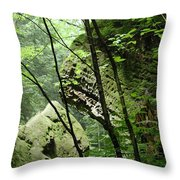 Conkle's Hollow Stone Arch Throw Pillow