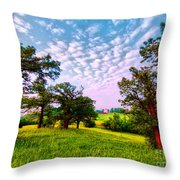 Conley Road Meadow, Oaks, Barn, Spring  Throw Pillow