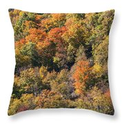 Connecticut Fall Color Throw Pillow