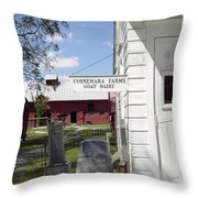 Connemara Flat Rock North Carolina Throw Pillow