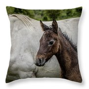 Connemara Foal Throw Pillow