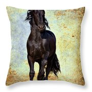 Conqueror Throw Pillow
