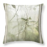 Conservatory Tracings Throw Pillow