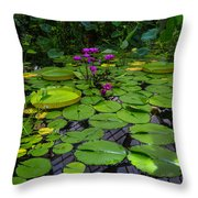 Conservatory Waterlilies Throw Pillow