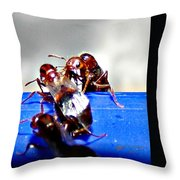 Consider The Ants 2 Of 3 Throw Pillow