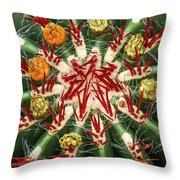 Constellation Throw Pillow