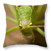 Consternation Throw Pillow