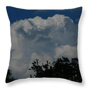 Consult With Nature Throw Pillow