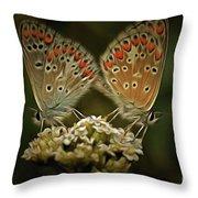 Contact - Detail Of The Butterflies Throw Pillow