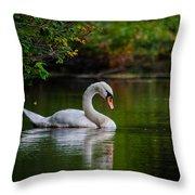 Contemplating Swan Throw Pillow