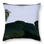 Contemplating Heron Throw Pillow