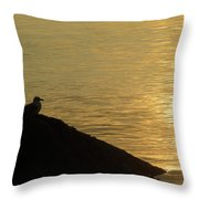 Contemplation II Throw Pillow