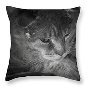 Contemplation Of Thumbody In Black And White Throw Pillow