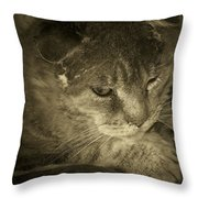 Contemplation Of Thumbody In Sepia Tone Throw Pillow