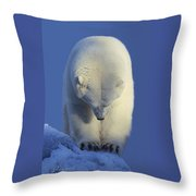 Contemplation Polar Bear Throw Pillow