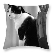 Contemplative Cat Black And White Throw Pillow