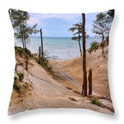 Contemplative Serenity Throw Pillow