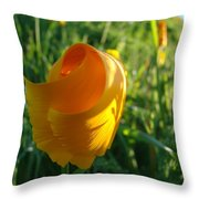 Contemporary Orange Poppy Flower Unfolding In Sunlight 10 Baslee Troutman Throw Pillow