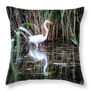 Content Egret  Throw Pillow