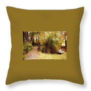 Contented Path Throw Pillow