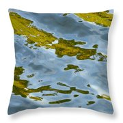 Continental Drift Throw Pillow