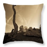 Contrails And Driftwood Throw Pillow