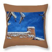 Contrast After The Snow Throw Pillow