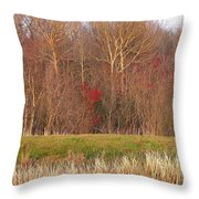 Contrasting Colors Throw Pillow