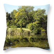 Convergence Of Two Rivers Throw Pillow