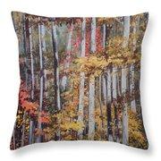 Converging Colors Throw Pillow