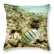 Convict Tang Throw Pillow