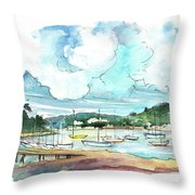 Conway 04 Throw Pillow