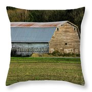 Conway-249-edit- Throw Pillow