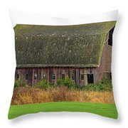 Conway-434 Throw Pillow