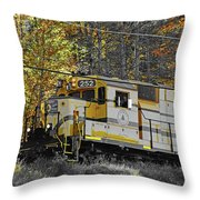 Conway Scenic 252 Throw Pillow