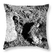 Cooing Rocks Throw Pillow