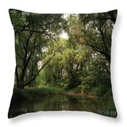 Cook County Forest Preserve No 6 Throw Pillow
