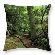 Cook Forest Throw Pillow