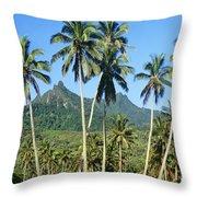 Cook Islands Throw Pillow