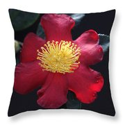 Cookie Cutter Camellia Throw Pillow