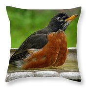 Cool And Cautious Throw Pillow