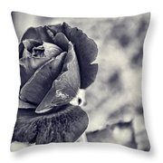 Cool Black Rose Throw Pillow